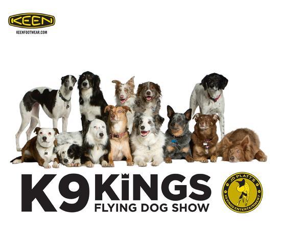 J D Platt S K9 Kings Entertainment As Seen On Greatest American Dog